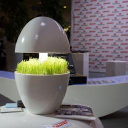 Proart. Eco светильник ONE из искусственного акрилового камня. Дизайн: Екатерина Кайсина